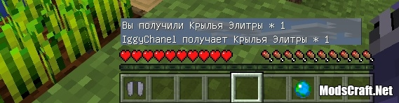 Надкрылья [Гайды Minecraft PE]
