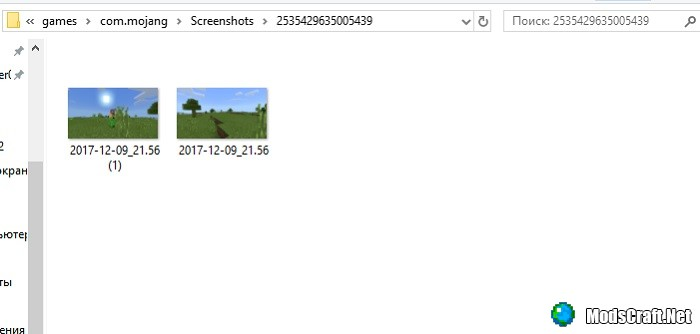 Мод Take Screenshot Button Addon 1.2